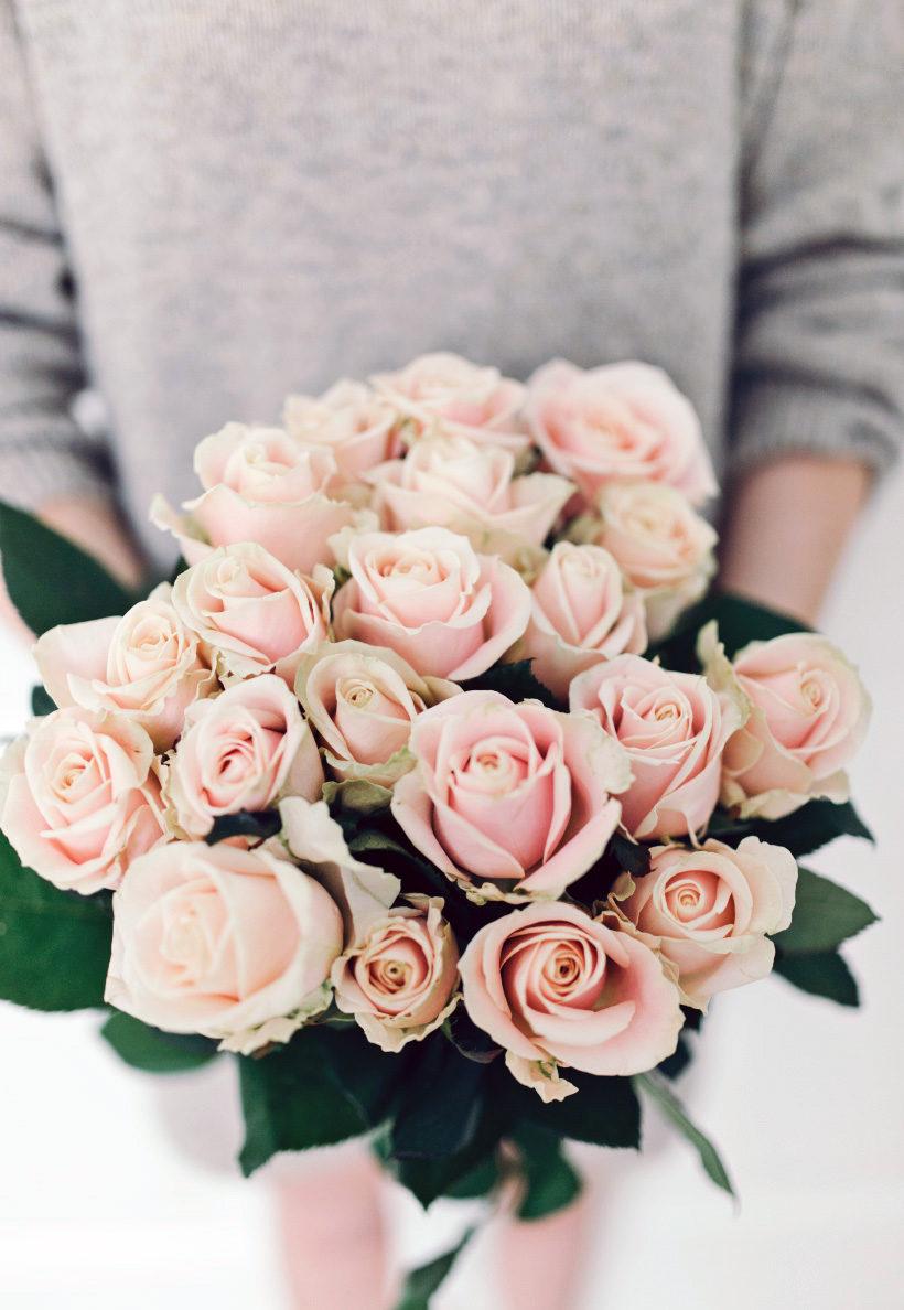 alexa-dagmar-roses